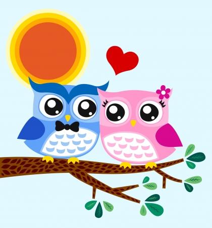 owl couple illustration  Vector