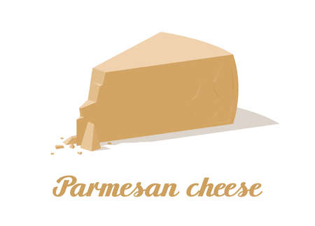 Parmesan cheese. Realistic cheese on white background. Vector illustration. Collection