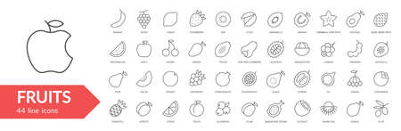 Fruits line icon set. Isolated signs on white background.