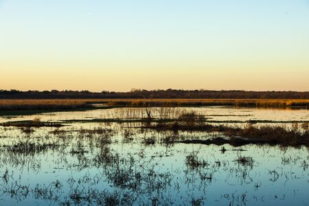 Brazos Bend State Park, Houston, Texas, USA, sunset. Thin horizon of lake shore.