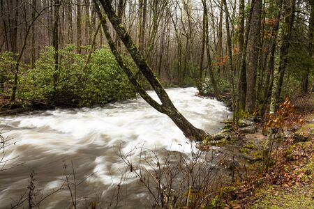 River and stream, smoky mountains in usa Stock Photo