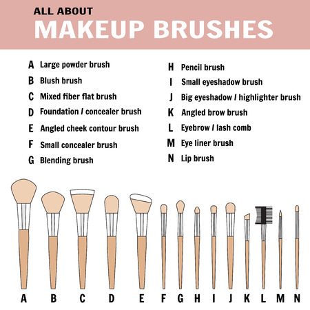 Brushes for makeup with names - vector illustration Illustration