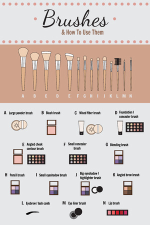 makeup brushes: Cosmetic infographics - vector. How to use brushes for makeup.