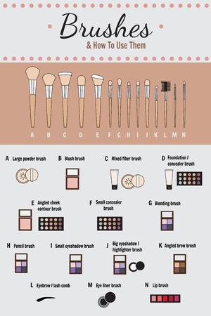 Infographies cosmétiques - vecteur. Comment utiliser des brosses pour le maquillage.