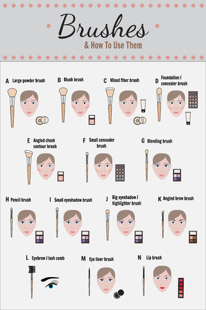 makeup artist: Cosmetic infographics - vector. How to use brushes for makeup.