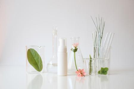 expérience de laboratoire et recherche avec des feuilles, de l'huile et des extraits d'ingrédients pour la beauté naturelle et les produits de soin bio. médecine douce. spa. Banque d'images