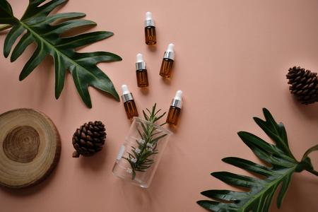 천연 화장품 크림, 세럼, 잎 허브, 나무로 포장하는 스킨 케어 빈 병. 바이오 유기농 product.beauty 및 스파 개념.