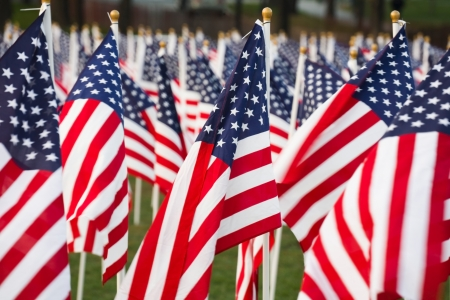 observance: Closeup of stars and stripes flags in a park Stock Photo