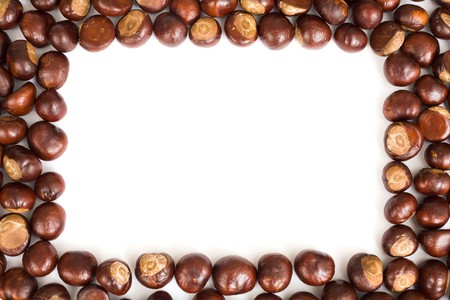 conker: Conker border isolated on a white background Stock Photo