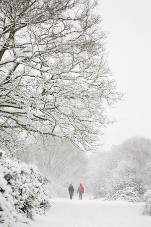Man and woman walk a dog in a winter snow scene