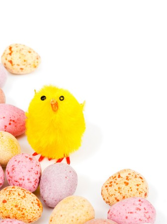 Colorful easter chick and egg border with copy space photo