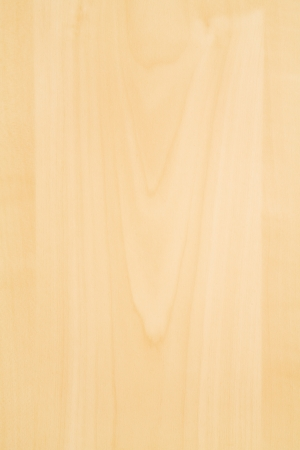 softwood: Detail of a wooden veneer