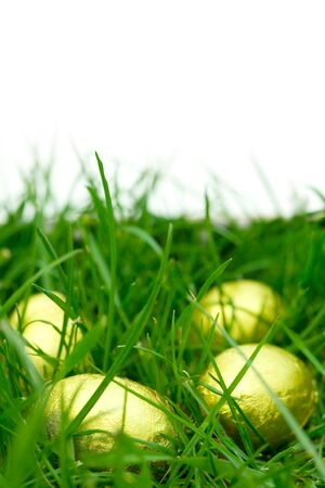 Easter eggs in grass with a white background photo