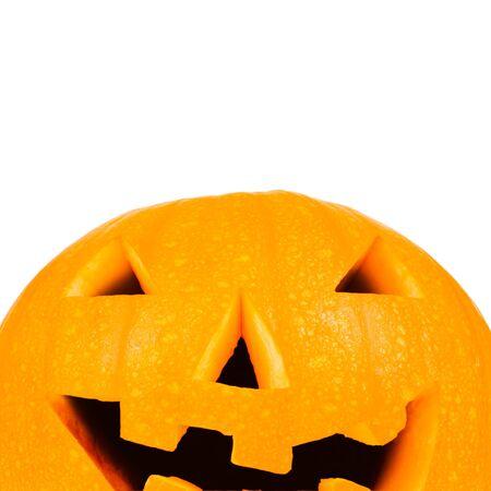 Halloween pumpkin against white with copyspace photo