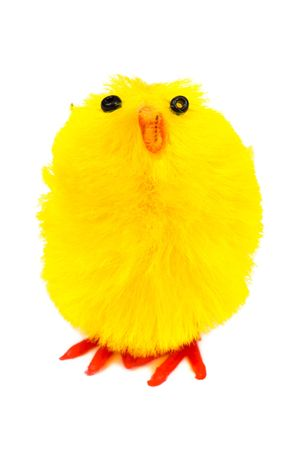 Yellow easter chick isolated on a white background photo