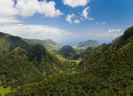 ribeira: Rainforest of Madeira viewed from Ribeiro Frio Stock Photo