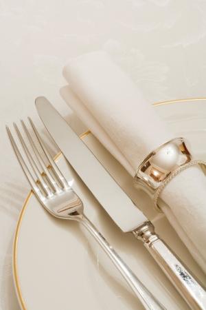 瀬戸物: カトラリー、プレートやナプキン ダマスク織のテーブル クロスの上での場所の設定 写真素材