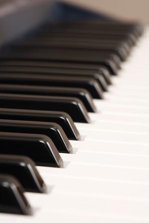 Closeup of the keys on an electronic keyboard photo