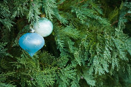 Christmas decorations hanging in a real christmas tree with lots of copy space photo
