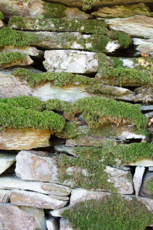 Closeup of an traditional drystone wall covered in moss and lichen photo