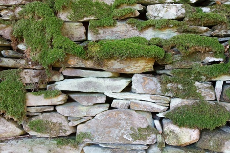 drystone: Ancient drystone wall covered in moss and lichen