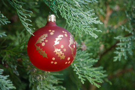 nobody real: Closeup of a christmas decoration hanging in a real christmas tree