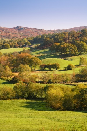 pastoral scenery: Countryside bathed in afternoon sunlight. Langdale, Lake District, Cumbria, UK