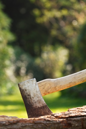logger: Axe for chopping wood embedded in a tree stump Stock Photo