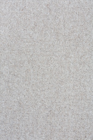 Light gray carpet closeup suitable for a soft textured background photo