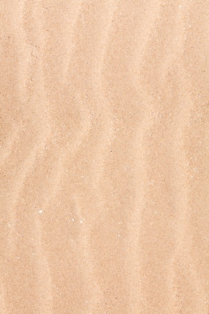 Closeup of a wavy pattern in a sand dune on the beach photo