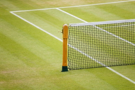 sideline: Detail of a tennis net and post on a grass court
