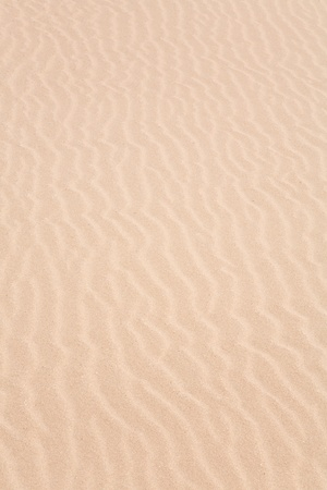 Closeup of a ripple pattern in a sand dune on the beach photo