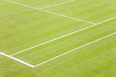 center court: Detail of white lines on a grass tennis court Stock Photo