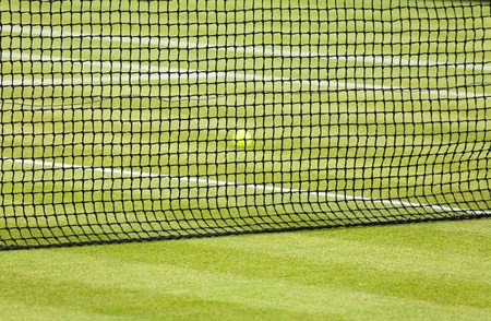 Detail of a tennis ball behind a net on a grass court photo