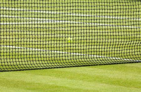 Detail of a tennis ball behind a net on a grass court Stock Photo - 12963048
