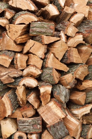woodpile: Detail of a stack of oak firewood chopped and seasoning