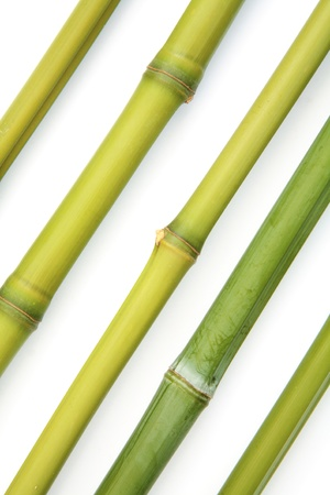 Fresh green bamboo canes in a diagonal pattern Stock Photo - 15012016