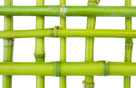 Bamboo pattern isolated against a white background Stock Photo - 15012019