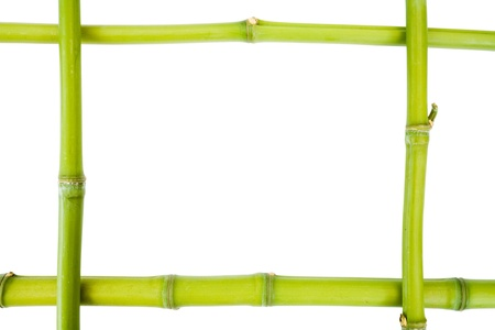simple border: Bamboo frame on a white background with copy space Stock Photo