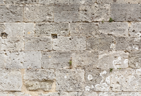 solidity: Closeup of ancient masonry stonework ideal for a template or background