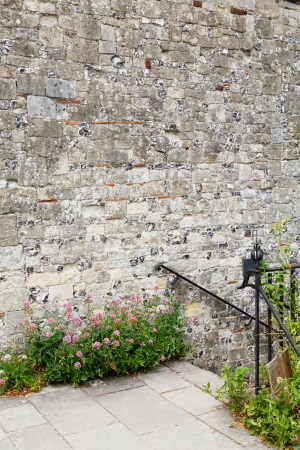 Flagstones and stone wall in a formal garden with lots of copyspace photo