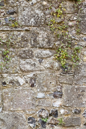 Old stone wall closeup from an ancient medieval castle photo