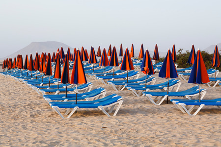 loungers: Line of loungers and umbrellas on a sandy beach