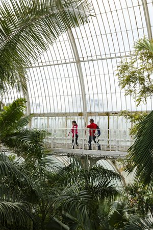 London, UK - April 18, 2014. Visitors walk around the interior of the Palm House at Kew Gardens. The gardens were founded in 1840 and are of international significance for botanical research and education.