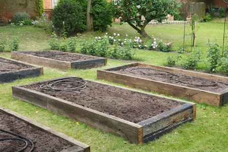 Newly built raised beds with irrigation hose before planting in a newly prepared vegetable garden Archivio Fotografico