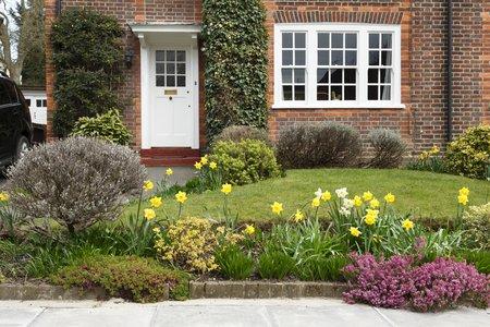 Una casa de época en Pinner, Londres, con un jardín delantero plantado con flores de narciso
