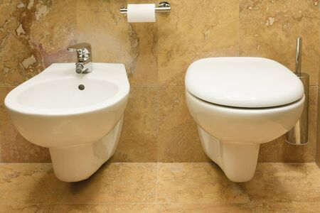 Toilet and bidet in a luxury bathroom