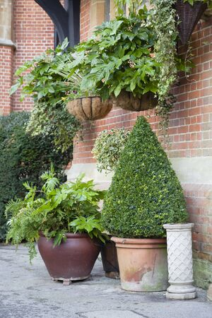 English garden with pots and hanging baskets 스톡 콘텐츠