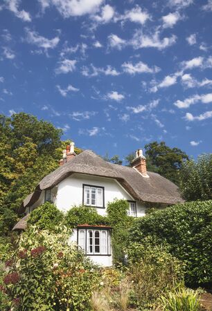 Thatched cottage in the New Forest, Hampshire, England Stock Photo