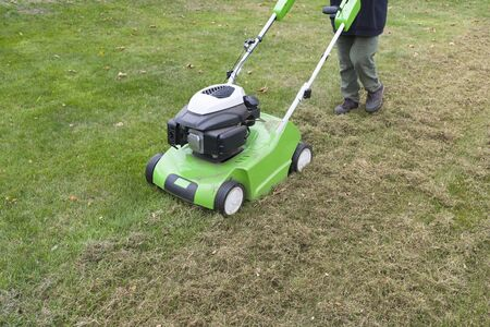 Scarifying lawn with a scarifier. Person dethatching moss in a backyard, lawn maintenance, UK